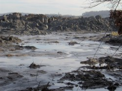 Some 525 million gallons of wet coal ash spilled into the Tennessee River and surrounding areas last December, flowing into the water supply for Chattanooga and millions of people living downstream in Alabama, Tennessee and Kentucky. Afterwards, tests found elevated levels of lead and thallium, which have been linked to birth defects and nervous and reproductive system disorders.?