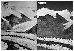 East Ronbuk glacier below Mt. Everest has lost 300 to 400 feet of ice since 1921