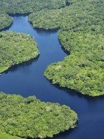 "The Amazon River basin - known as the ""lungs of the planet"" - face significant threats"