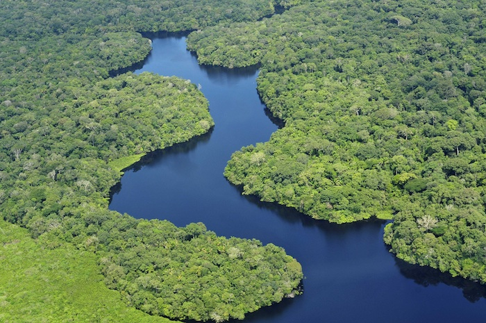 """The Amazon River basin - known as the """"lungs of the planet"""" - face significant threats"""