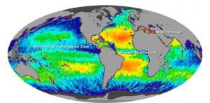 Researchers are concerned about rapidly rising ocean salinity
