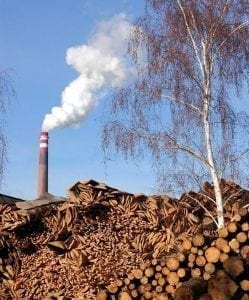 Biomass can be a part of the effort to cut back on fossil fuels, but only if it is harvested and used in ways that reduce pollution, cut emissions and protect forests. Pictured: A biomass-burning power plant.
