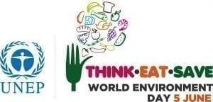 World Environment Day 2013