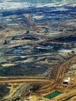 What was once forest is now a barren expanse of land surrendered to dirty fuels