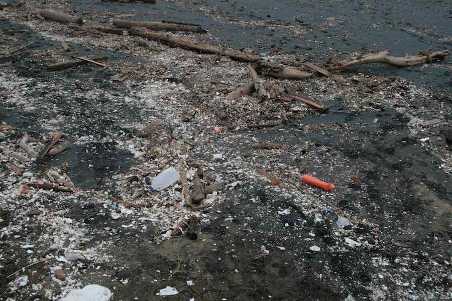 essay on garbage dumped on road