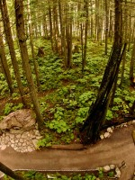 31-the-enchanted-forest-bc-attraction-revelstoke