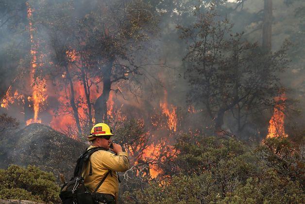 california fire essay