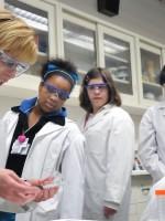 The next generation - Next Generation Science Standards
