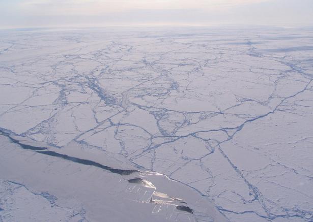 climate change arctic essay