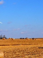 Wind energy provides more the two-thirds new generating capacity in the US for October 2014