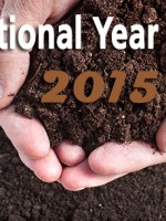 International-Year-of-Soils