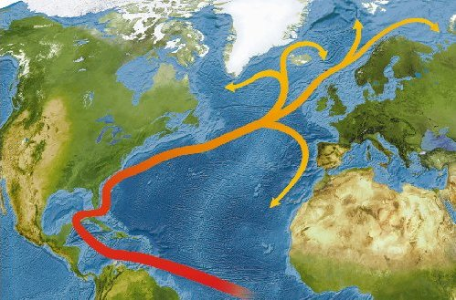 Gulfstream ocean circulation