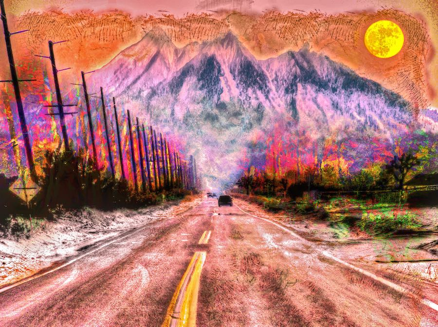 Fire Road - the California drought