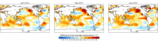 2014 sea surface temperature anomalies: NOAA