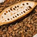 pod-on-beans