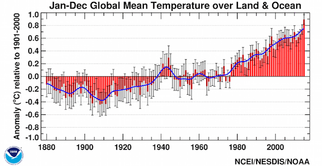 Ocean-land surface temperatures 2015