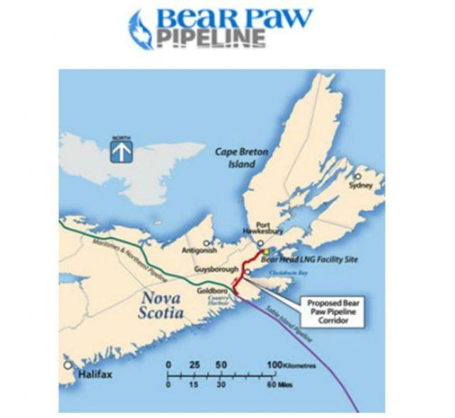 Bear Paw Pipeline