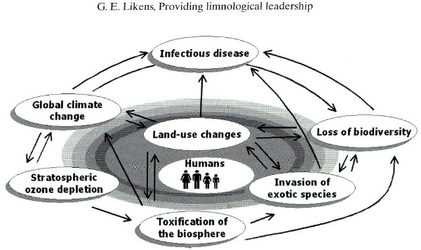 leadership and environmental change