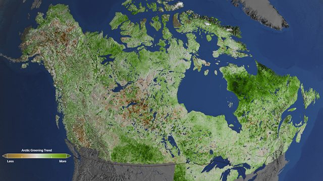 Arctic Climate Change: The Greening of the North American Arctic