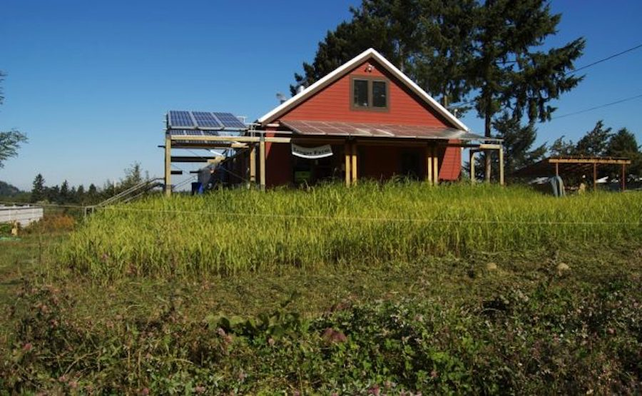 USDA supporting rural renewable energy