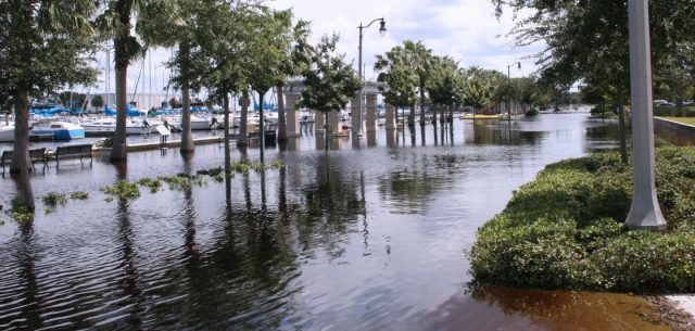 Sunny day flooding. South florida is in the cross-hairs of regional sea level rise