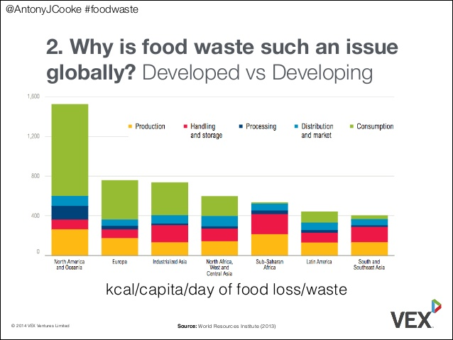 The global issue of food waste