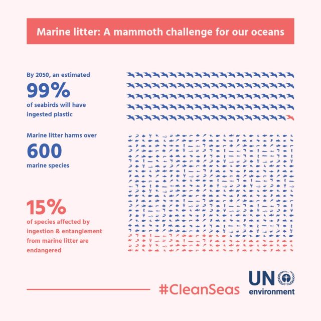 The massive challenge of marine litter