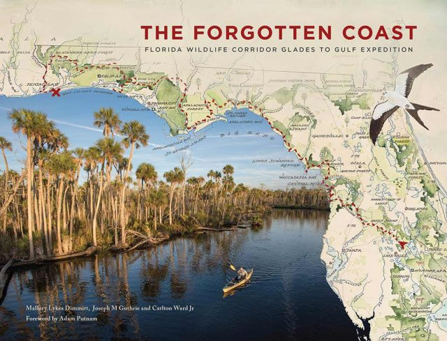 "Helping to preserve forests along Florida's ""forgotten coast"""