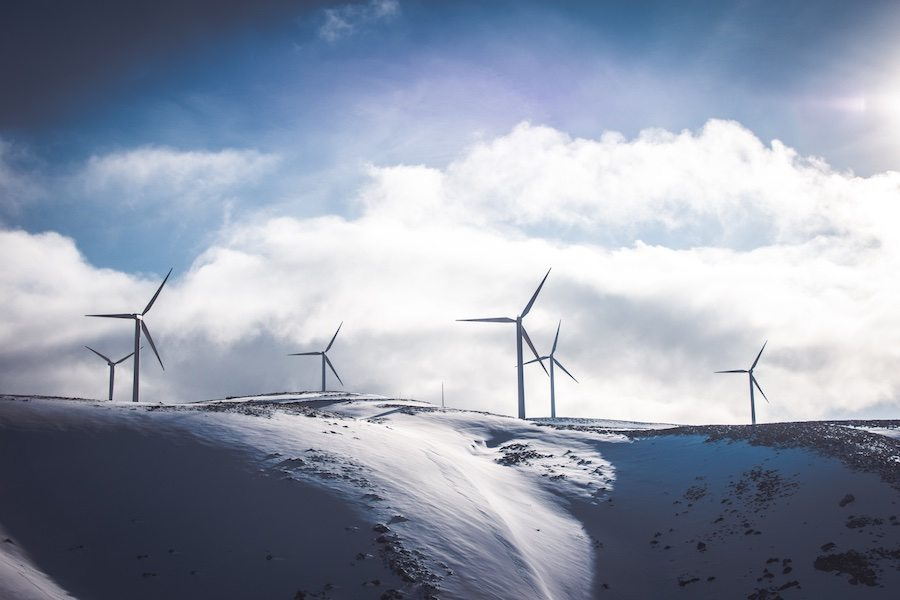Sustainable industry becomes more mainstream - photo by Jason Blackeye