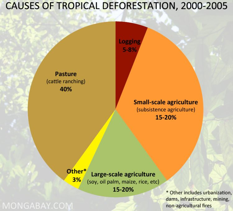 The main causes of tropical deforestation