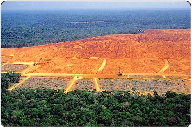 Deforestation: Clearcutting tropical rain forest