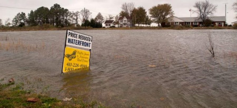Chronic inundation and real estate value