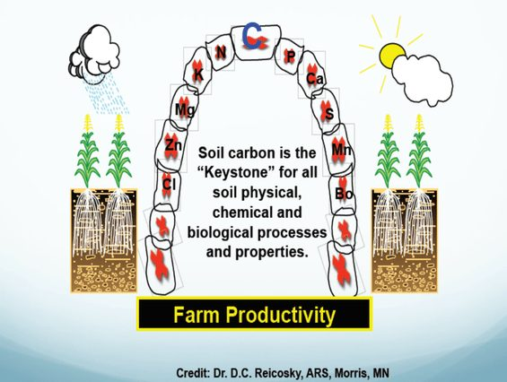 "Soil carbon is the ""Keystone"" for all physical, chemical, and biological processes and properties"