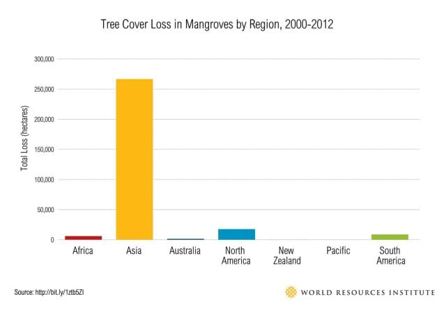 Tree cover loss in Mangroves