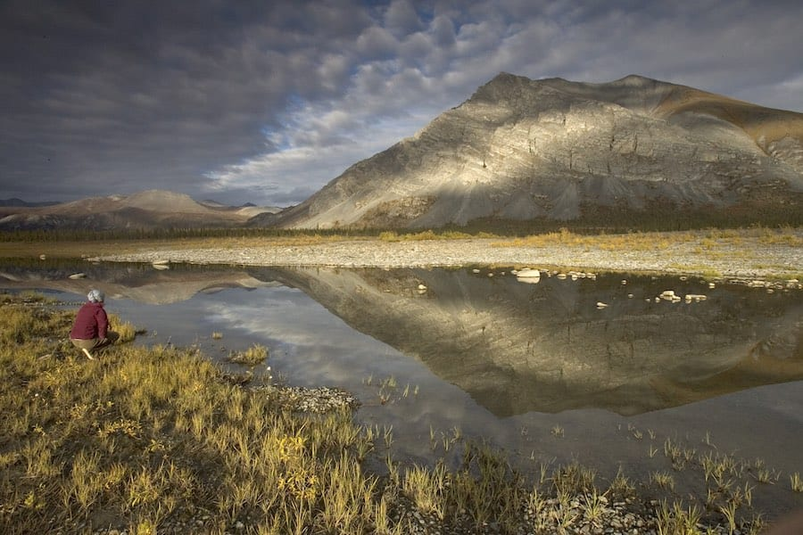 The Trump administration gets close to opening the National Arctic Wildlife Refuge to drilling